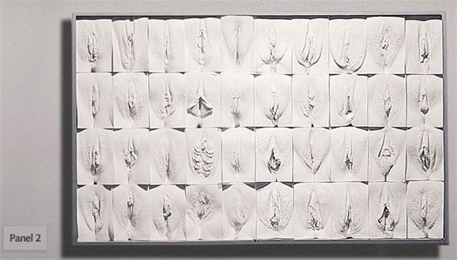 Jamie McCartney / The Great Wall of Vagina (La gran pared de vaginas) (4/6)
